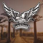 portfolio_ankoay