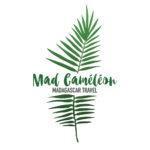 portfolio_madcameleon